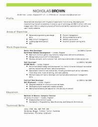 Graphic Designer Resume Format Pdf Beautiful Best Ideas Resume Cv