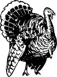 wild turkey clipart black and white. Unique Black Clipart  Turkey Image Library For Wild Turkey Black And White 2
