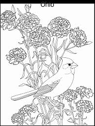Small Picture State Flower and State Bird coloring page