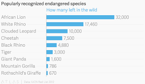 Giant Panda Population Chart Popularly Recognized Endangered Species