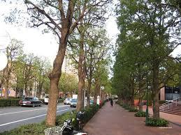 「ガーデンプレイス 前 道」の画像検索結果