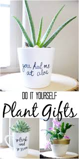 simple diy plant gifts plant puns and pretty idea for potted plants