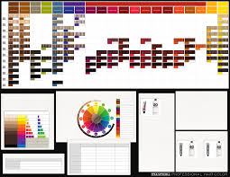 Pm Color Chart Paul Mitchell Hair Products Paul Mitchell