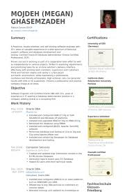 Oracle Dba Resume samples. Work Experience