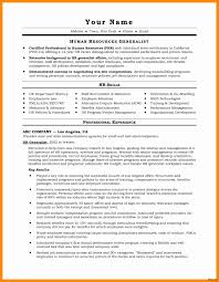 Professional It Resume Writers It Resume Writers Collections Of Effective Resume Writing New