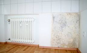 A Damp Wall With Tiling And Mould