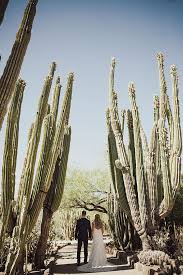 here are desert botanical garden phoenix az admission for your home