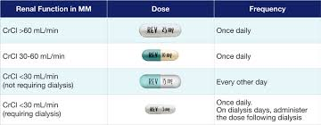 Renal Dosing Chart Rd Dosing Revlimid Lenalidomide