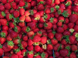 What Are Strawberries