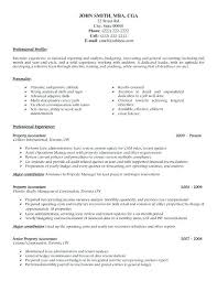 Professional Accountant Resume Accountant Cv Template Metabots Co