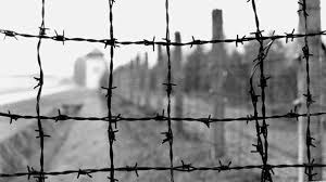barbed wire fence holocaust. Beautiful Holocaust Holocaust Barb Wire With Barbed Wire Fence Holocaust F