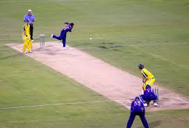 Delivery Cricket Wikipedia