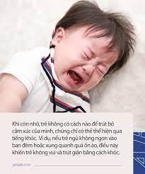 Trẻ hay khóc và ít quấy khóc sẽ có 3 khác biệt này khi lớn lên