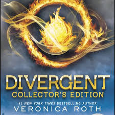 books for s who loved the hunger games