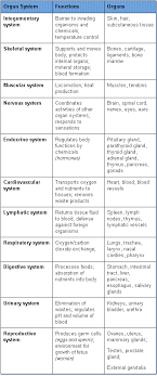 Body Systems Chart 3 System And Functions Teas Test Life Science Teaching