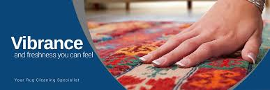 rug protection in the dallas fort worth area