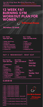 Fat Loss Gym Workout Plan For Women 12 Week Exercise