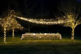 christmas lighting decorations. Outdoor String Lights - Pro Series Christmas Lighting Decorations O