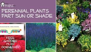perennial garden plans for partial sun or shade