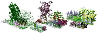 Small Picture Planting design database library Browse our 3D library for plant