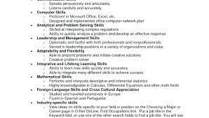 Additional Skills Resume Examples Basic Computer Skills Resume