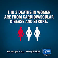 what is heart disease and stroke