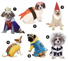hounds 26 awesome dog costumes for 2016