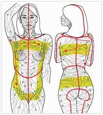 Resultado de imagen para lymphatic massage