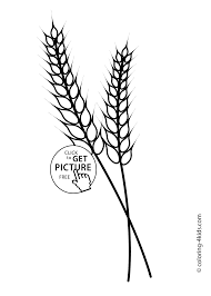 Small Picture Nature Wheat Coloring Page For Kids Printable Free And Ear
