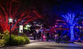 Best Lights In Houston Holiday Lights In Houston Best Christmas Displays Events