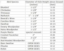 Birdhouse Hole Size Chart Canada A Pictures Of Hole 2018