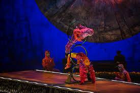 Premium Offers Vip Exclusivity Luzia Vancouver Cirque