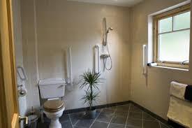 25 Best Wet Room Ideas U0026 Decoration Pictures  HouzzWet Room Bathroom Design
