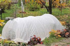 a small hoop house covered in white garden cloth provides frost protection for chilly autumn and