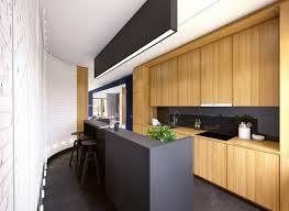 Matte Black Kitchen Cabinets Modern Kitchen Best Modern Kitchen Ideas For Make Elegant Remodel