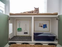 animal friendly furniture. petfriendly home ideas for decorating and design hgtv animal friendly furniture