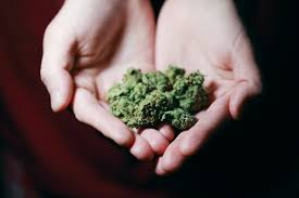 marijuana detox