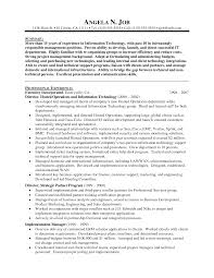 Sample Information Technology Manager Resume Best O Sevte