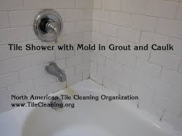 25 best mold and mildew images on cleaning s bathroom caulk mold