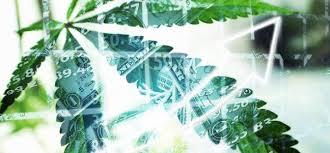 Leaf Stock Chart Buds Duds Namaste Technologies Inc Aleafia Health Inc