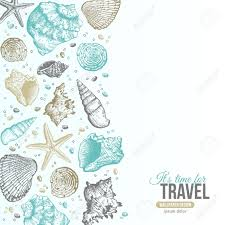 Coquillage Dessin Summer Sea Shells Concept Vecteur De Fond Avec Des Coquillages Sea L L L L L L L L L