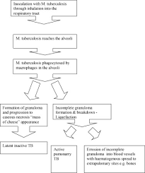 Diagnosis And Treatment Of Tuberculosis Of The Foot And