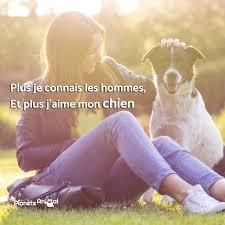 10 Bonnes Raisons Dadopter Un Chien De La Rue Citations Animaux