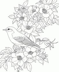 Coloring Pages Flowers Coloring Pages For Adults Selfcoloringpages
