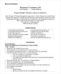 Download Business Analyst Project Management Resume Example