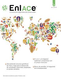 PDF) Descubriendo RECURSOS GENÉTICOS DE MAÍZ Y TRIGO para el desarrollo de  variedades mejoradas adaptadas al cambio climático