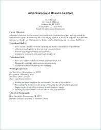 Objective Sales Resumes Resume Objectives For Career Summary As