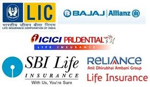 In 2021, health insurance is an important investment, as it pays for the health care expenses of the individual when hospitalised. List Of Top 5 Best Life Insurance Companies In India On The Basis Of Best Life Insurance Companies Top Life Insurance Companies Life Insurance Companies