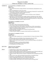 Download Anti Money Laundering Analyst Resume Sample as Image file