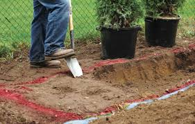 how to plant garden. Dig A Trench For Your Hedge, Rather Than Individual Holes How To Plant Garden
